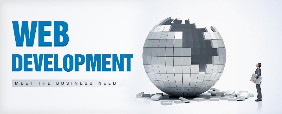 professional web design custom website development